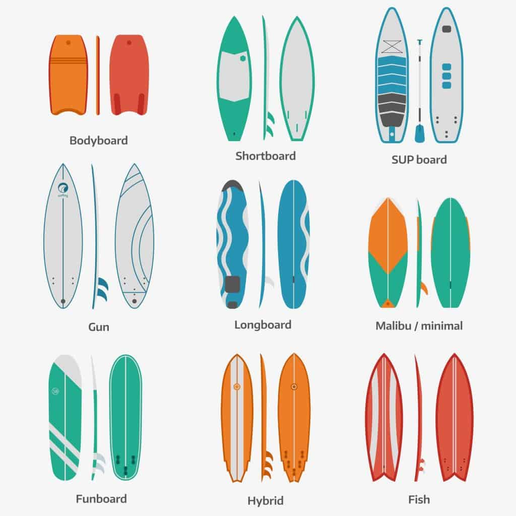 types of surfboard (graphic)