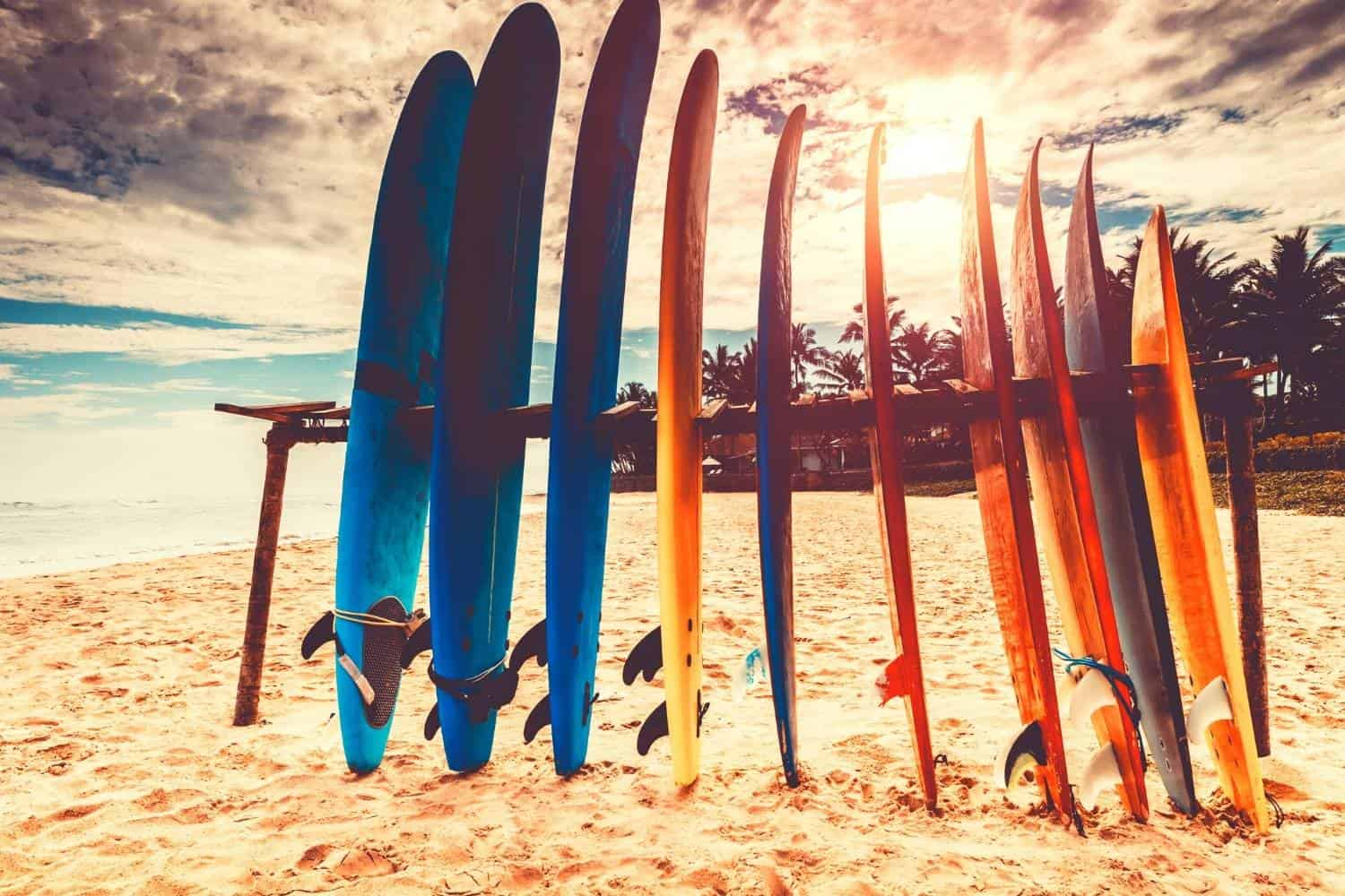 surfboard shapes